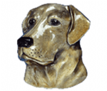 Labrador Belt Buckle with display stand. Product code WC1